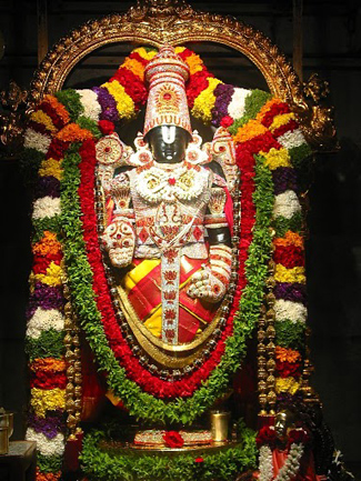Live Darshan of Tirupathi Balaji